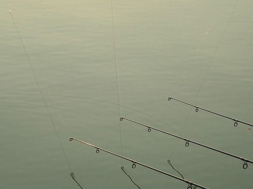 Umieszczenie zestwów w 3 zupełnie różnych rejonach łowiska zazwyczaj znacznie skraca czas oczekiwania na branie